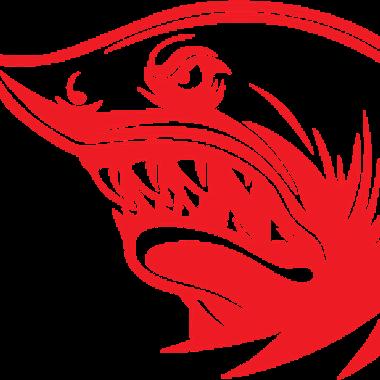 redpillshark