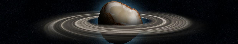 Space Coconut profile
