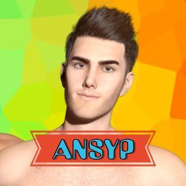 ANSYP