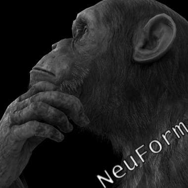 NeuForm