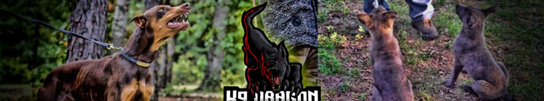 K9 Dragon Factory  profile