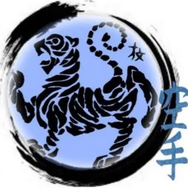 Modern_Combat_Karate