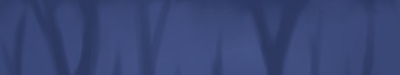 Arvamera profile