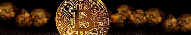 Crypto Tamil profile