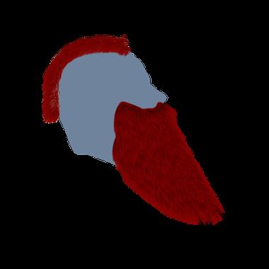 Jatorr