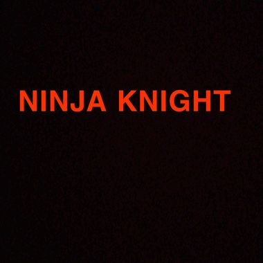 NINJA KNIGHT
