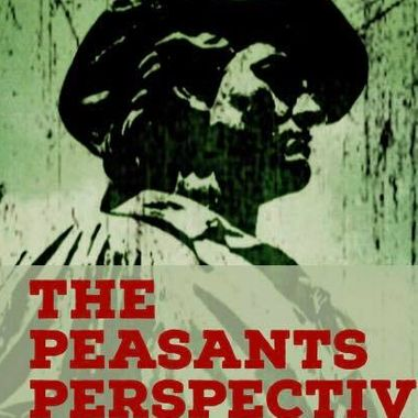 The Peasants Perspective