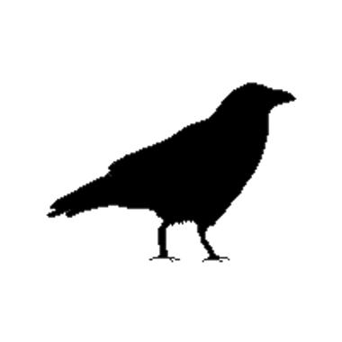 random Crow