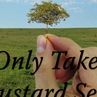 Mustard Seed Sentinel