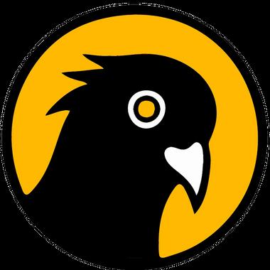 Black Pigeon Speaks