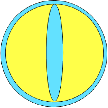Spell Circle Studios