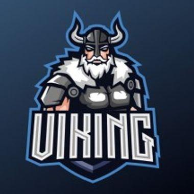 VikingDS