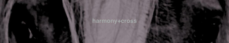 Harmony Cross Equitation profile