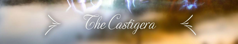 The Castig Era profile